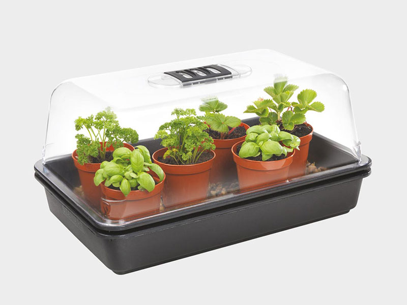 Stewart Electric Propagator with Thermostat