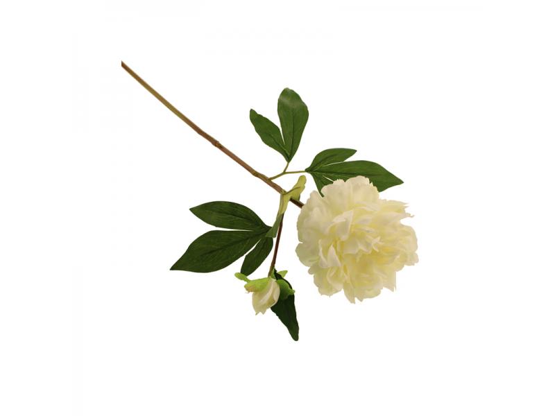 66cm Peony - Cream