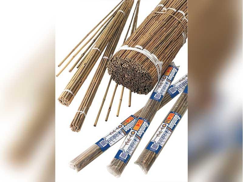 Gardman Natural Bamboo Canes