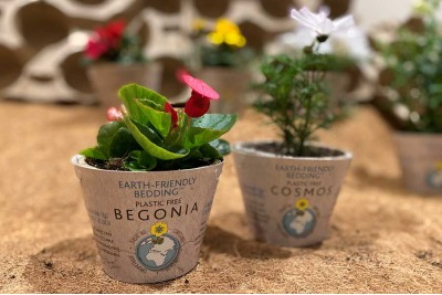 Bio-Degradable Pots: The Future of Sustainable Gardening?