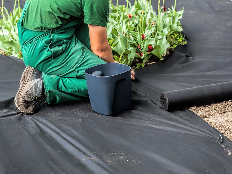 TDP50 Weed Suppressant Fabric