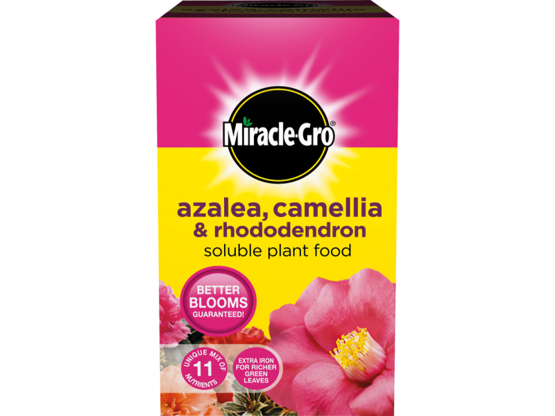 Miracle-Gro Azalea, Camelia and Rhododendron Soluble Plant Food