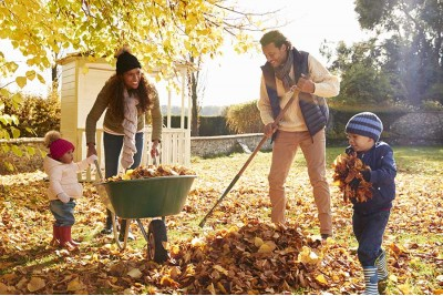 How to Prepare Your Garden for Autumn and Winter