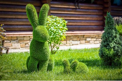 Embrace These New Gardening Trends in Time for Easter