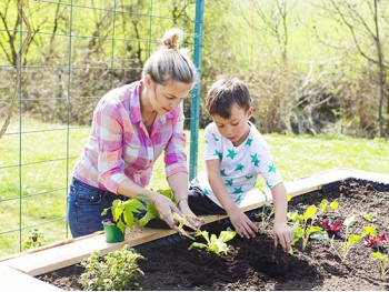 How You and the Kids Can Grow Your Own