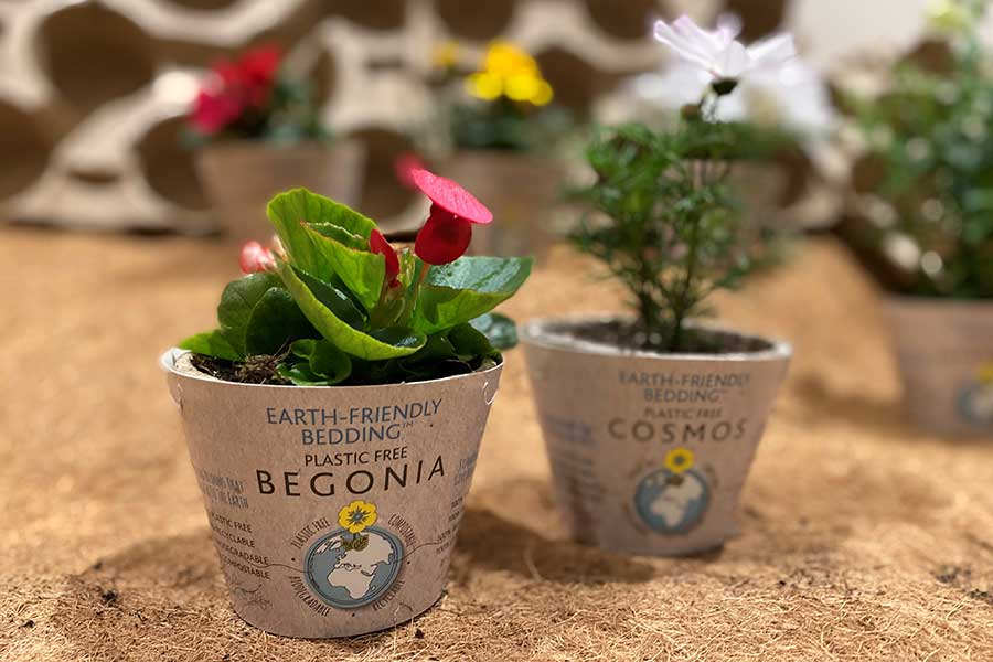 Earth friendly natural biodegradable plant pots